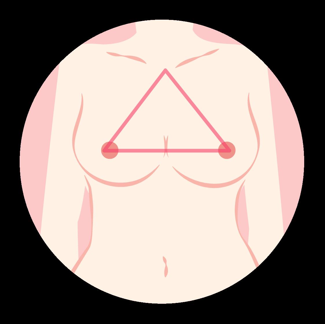 胸部黄金比例