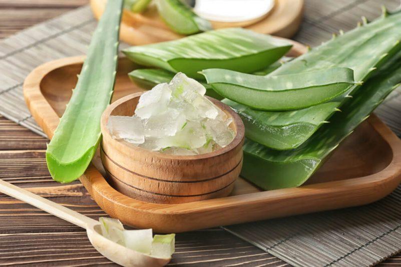 暗瘡治療方法:搽蘆薈啫喱可以治療暗瘡?