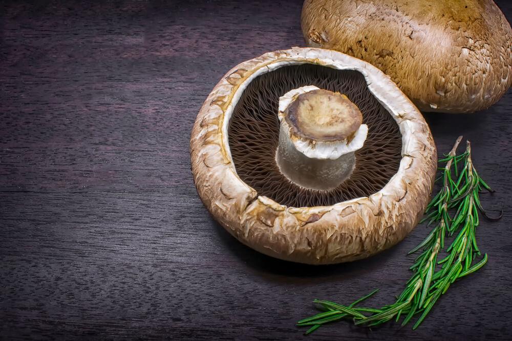 低碳食物-蘑菇