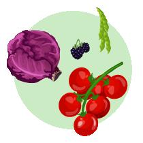 从不同食物中吸收有用的维他命能有助预防雀斑-2