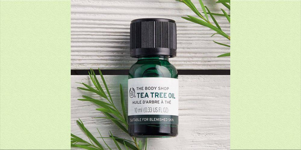 暗疮治疗方法:茶树油可以解决暗疮?
